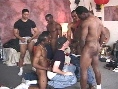 AC, Casper (TO), Dennis Lincoln, Ken Taylor, Kevin Kemp, Mocha, T-spoon, Tee