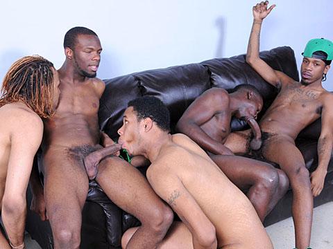 Gay touze entre mecs blacks gays TTBM, acteur porno gay et métis homos !